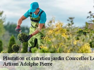 Entretien de jardin, jardinier à Courcelles Les Semur tél: 03.39 ...